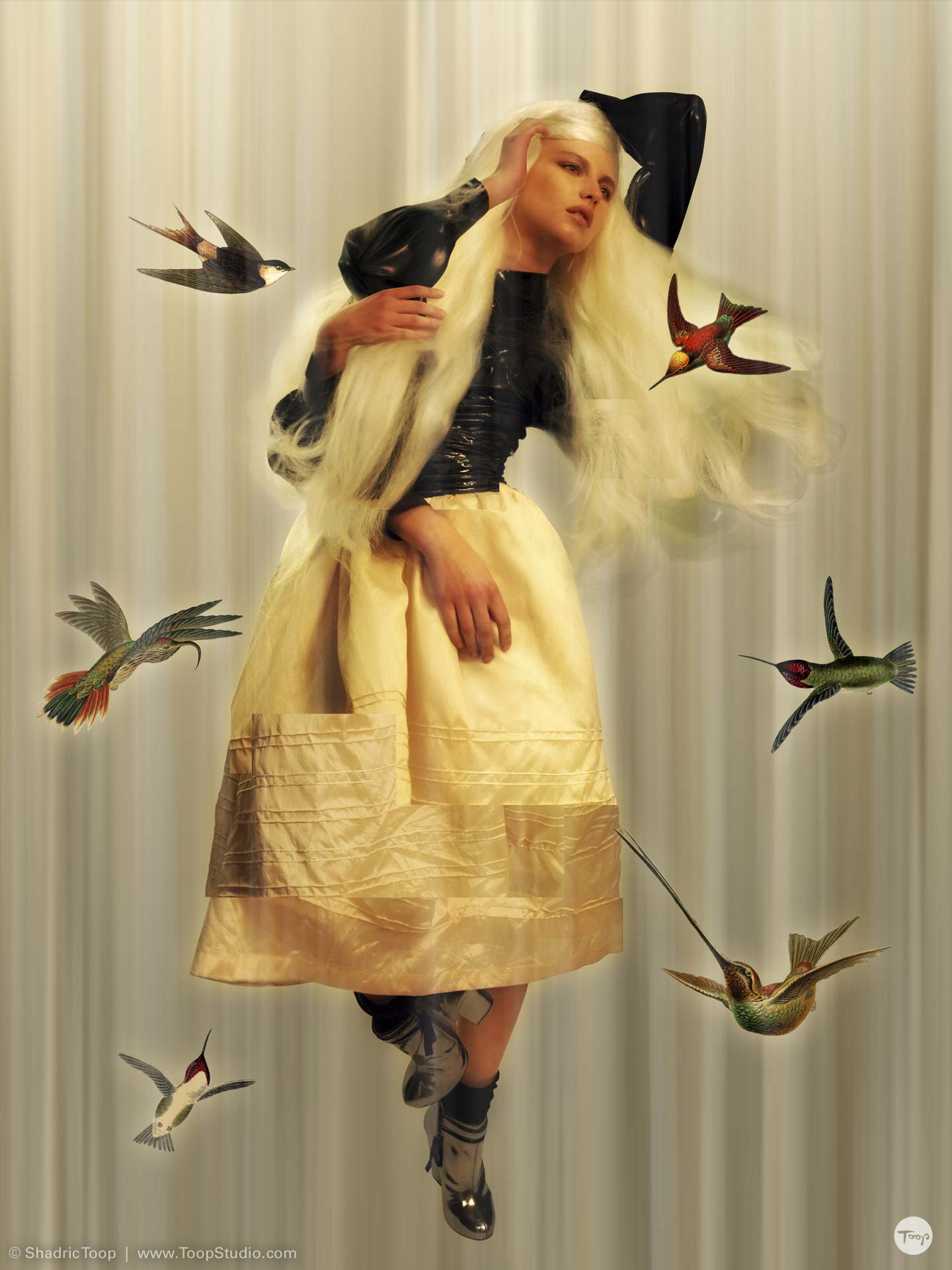 Stylized photographic collage of a model with long hair against an abstract moving background surrounded by exotic birds - work by Art Director Illustrator Shadric Toop - Brighton