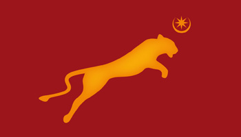 Springfield School logo based on a jumping lioness with the portsmouth star and crescent designed by Toop Studio