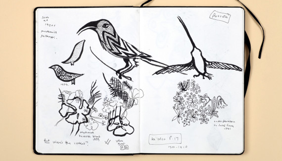 Page from Shadric Toop's sketchbook showing drawings of birds and flowers