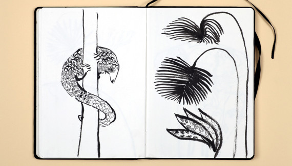 Page from Shadric Toop's sketchbook showing drawings of a pangolin and leaves