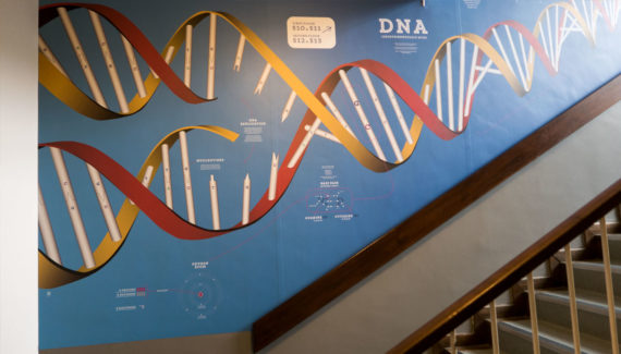 school wall graphics for science stairwells - for Denbigh High School showing a detail of dna - work by Toop Studio