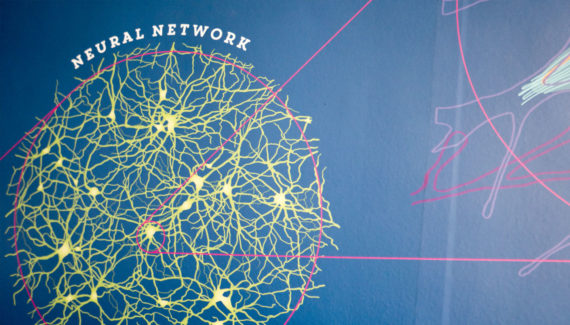 School wall graphic mural design showing a neural network in the brain