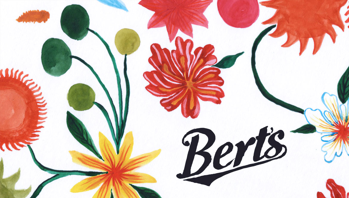 Hand painted brand design for berts homestore in Brighton influenced by Mexican fabric design - work by Shadric Toop Brighton graphic designer