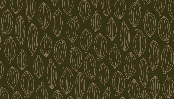 Georganics cardamom pattern illustration designed by Toop Studio