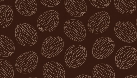 Georganics coconut pattern illustration designed by Toop Studio