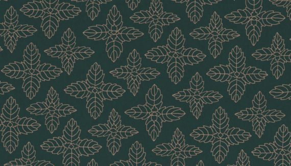 Georganics peppermint pattern illustration designed by Toop Studio