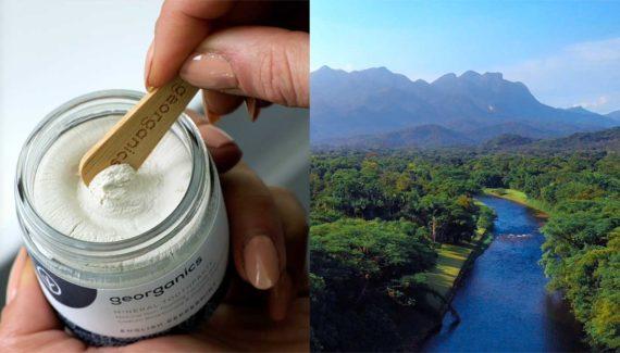 Video with Animation - Georganics - screenshot 02 Split screen Georganics toothpaste jar on left Rainforest on right - Toop Studio