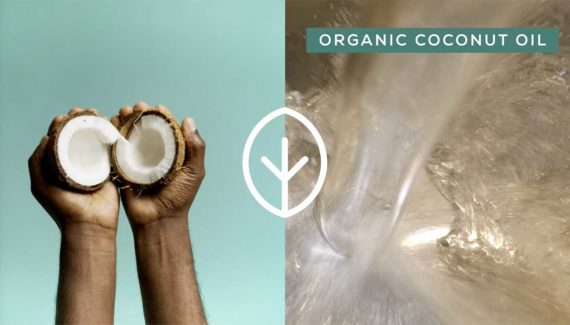 Video with Animation - Georganics - screenshot 05, split screen, person holding halved coconut on left, organic coconut oil on right - Toop Studio