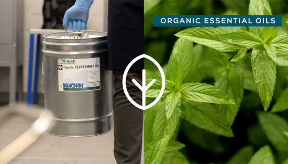 Video with Animation - Georganics - screenshot 06 split screen, barrel of peppermint essential oil of left, fresh peppermint leaves on right- Toop Studio