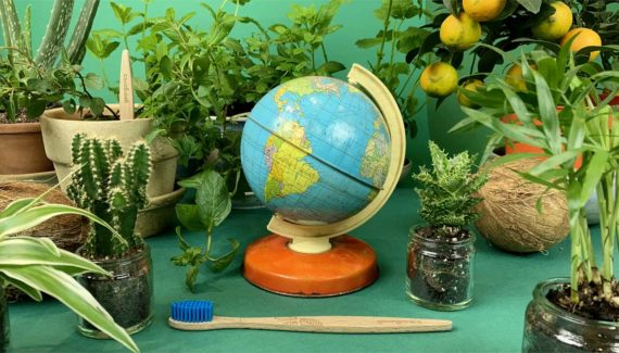 Video with Animation - Georganics - screenshot 08 frame from stop motion animation, still life of plants with a tin globe- Toop Studio